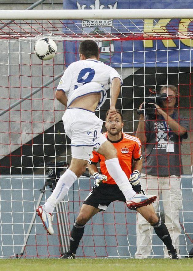 Útočník Bosny a Hercegoviny Vedad Ibiševič střílí gól brankáři Jehlemu v kvalifikačním utkání proti Lichtenštejnsku.
