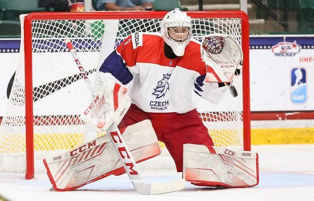 Do branky se během čtvrtfinále MS hráčů do 18 let dostali oba čeští brankáři - Suchánek i Šatný. Kanada jim dohromady nasázela deset gólů.