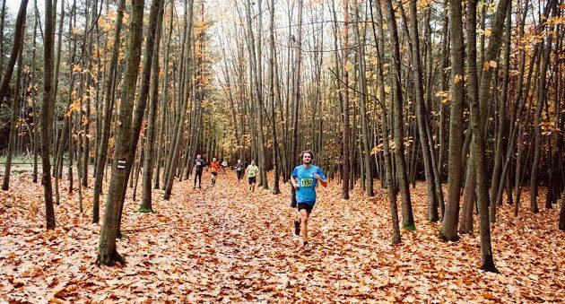 Klánovický 1/2maraton: Běh podzimním lesem má něco do sebe.