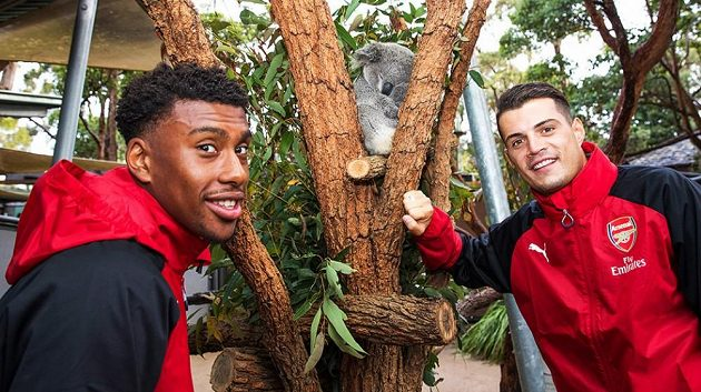 Skupina hráčů Arsenalu vyazila v Sydney do zologické zahrady.