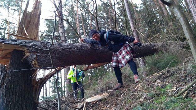 Cesta pro dřevorubce.