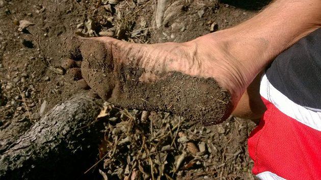 I takto může vypadat podrážka běžeckých bot.