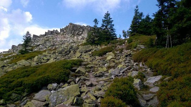 Jesenický maratón: Tomu říkám pořádný terén!