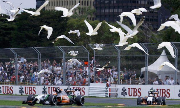 Momentka z kvalifikace na úvodní podnik sezóny seriálu formule 1 v Melbourne