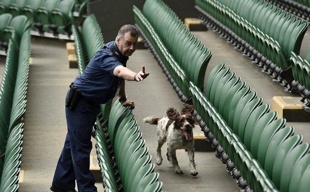 Běž pryč, pse, tady se bude hrát Wimbledon.