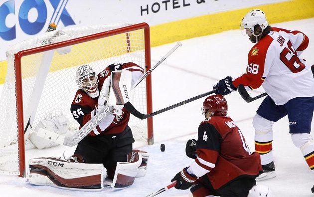 Český forvard Jaromír Jágr (68) z Floridy se snaží překonat brankáře Arizony Louise Domingueho (35) v zápase NHL.