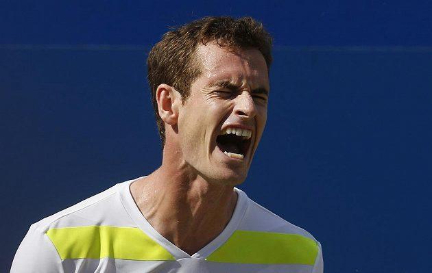 Rozzlobený skotský tenista Andy Murray, na Radka Štěpánka v Londýně nestačil.