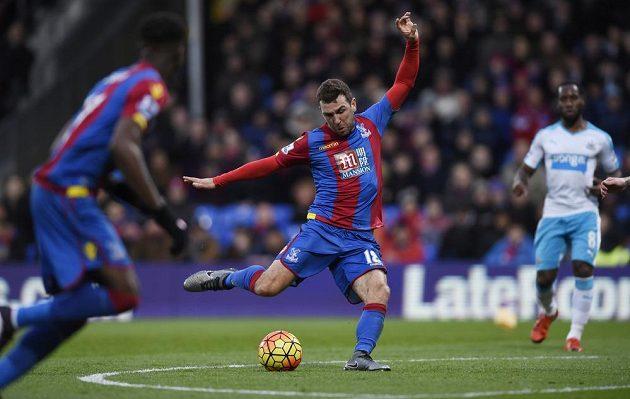 James McArthur z Crystal Palace dává první gól Newcastlu.