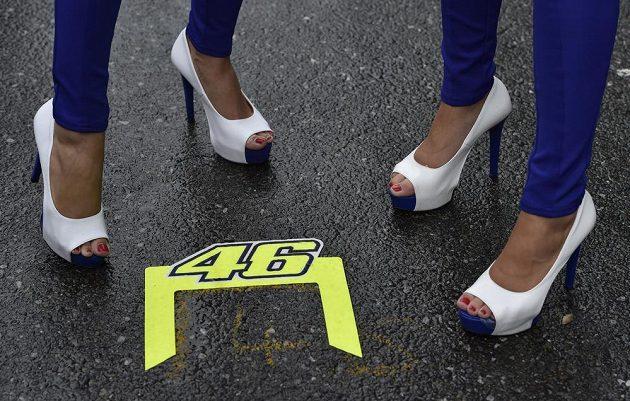 Typické startovní číslo Valentina Rossiho na brněnském asfaltu.