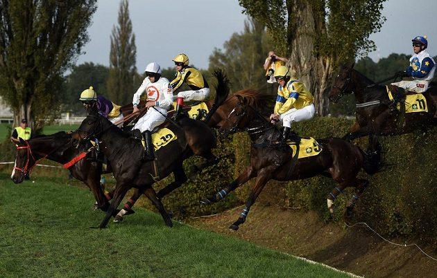 Vítěz dostihu Velké pardubické žokej Jan Faltejsek, dále Jiří Kousek s koněm Universe of Gracie (č.5) a Dušan Andrés s koněm Nikas na taxisu.