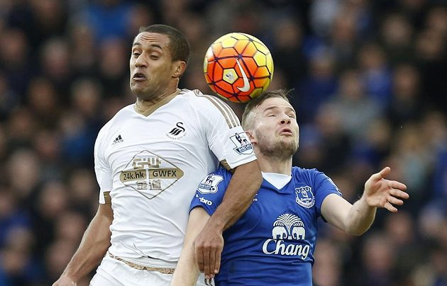 Evertonský Tom Cleverley (vpravo) a Wayne Routledge ze Swansea.
