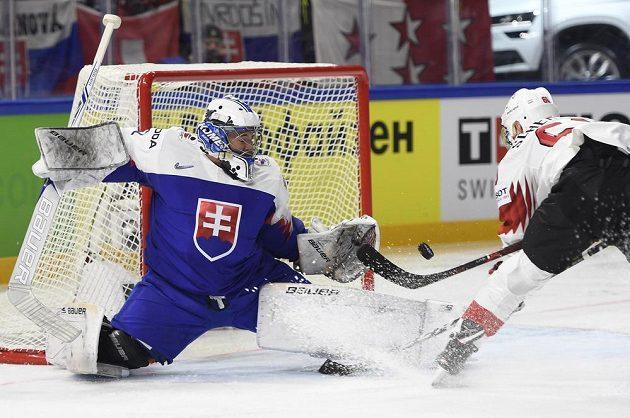 Slovenský brankář Marek Čiliak a Tristan Scherwey ze Švýcarska.