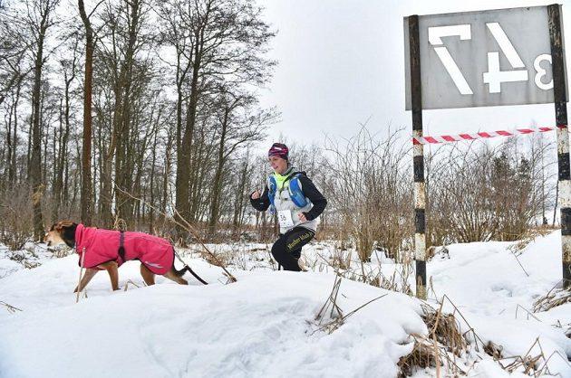 Lipno Ice Marathon - freestyle šampionky.