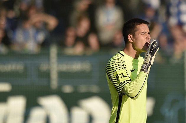 Brankář fotbalového Liberce Filip Nguyen.