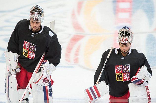 Gólmani Petr Mrázek (vlevo) a Michal Neuvirth.