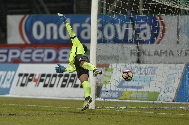 Příbramský brankář Aleš Hruška inkasuje gól.