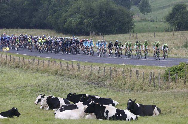 Cyklisté během sedmé etapy Tour de France.