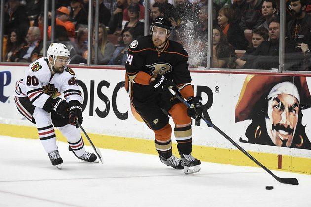 Útočník Kačerů Tomáš Fleischmann (vpravo) poprvé zasáhl do semifinálové série play off NHL proti Chicagu.