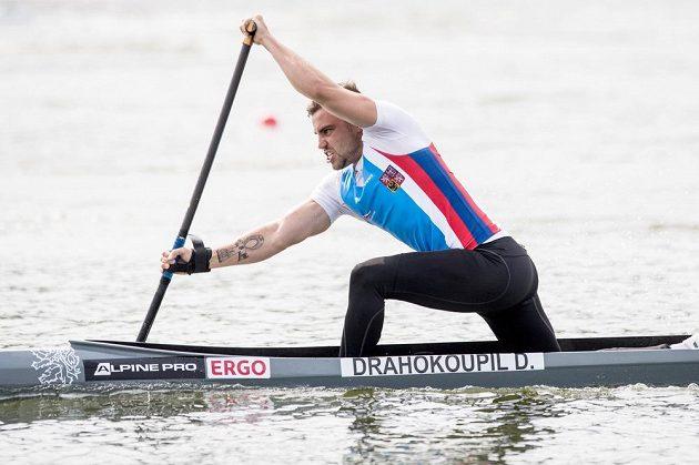 Kanoista Dan Drahokoupil v rozjížďce na 200 m během mistrovství světa v rychlostní kanoistice v Račicích.