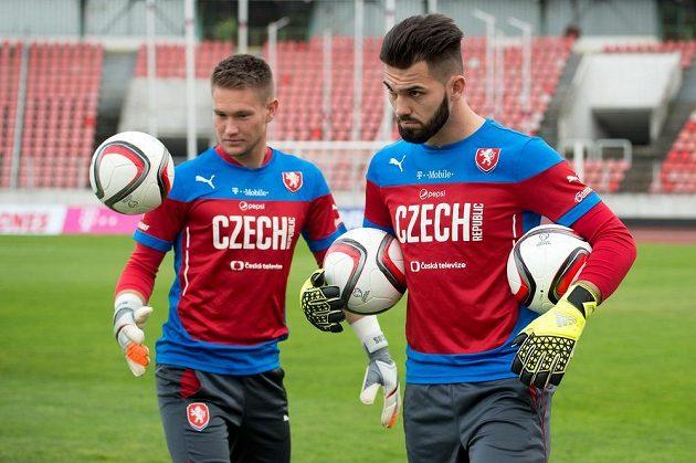 Brankáři Tomáš Vaclík (vlevo) a Tomáš Koubek na tréninku české fotbalové reprezentace před zápasy kvalifikace ME 2016 s Tureckem a v Nizozemsku.