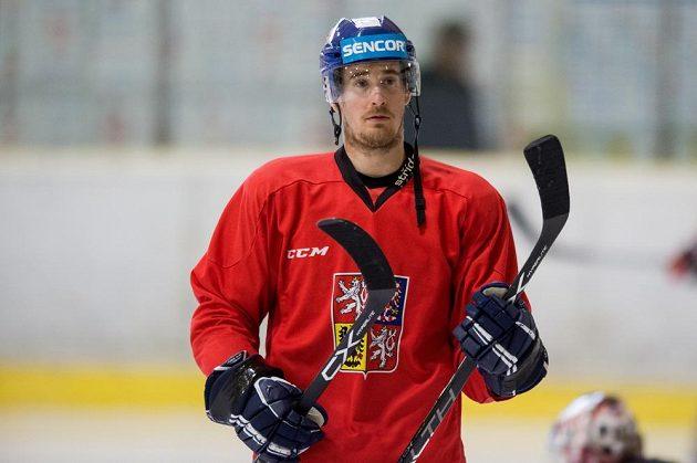 Útočník Roman Červenka během tréninku na kempu hokejové reprezentace.