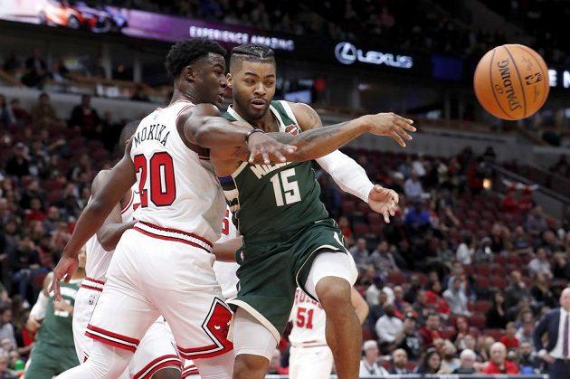 Basketbalista Chicaga Bulls Adam Mokoka (20) v přípravném utkání proti Milwaukee Bucks.