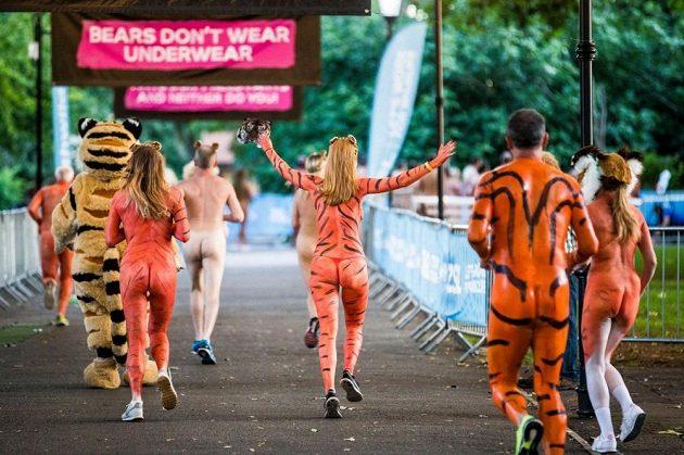 """""""Medvědi spodky nenosí,"""" hlásá jeden z transparentů v londýnské zoo."""