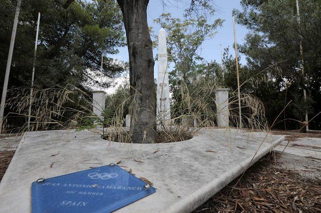 Park, který v roce 2004 osázeli stromy členové Mezinárodního olympijského výboru, je dnes zcela zpustlý. Na snímku olivovník tehdejšího šéfa MOV Juana Antonia Samaranche.