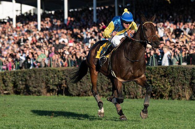 Žokej Jan Faltejsek na koni Tzigane Du Berlais oslavuje vítězství v dostihovém závodu 128. Velká pardubická.