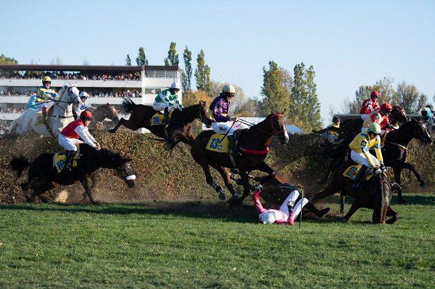 Řada koní z první vlny na Taxisově příkopu padá. Uprostřed (v růžovém) přistál na zemi žokej Josef Bartoš, za ním pod kopyty hnědáka Kasima (13) valach Vicody, který se smrtelně zranil.