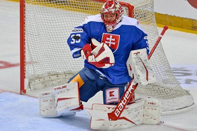 Brankář Slovenska Július Hudáček.