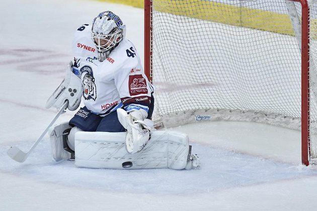 Brankář hokejového Liberce Dominik Hrachovina.