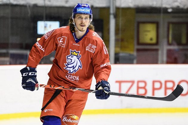 Libor Šulák během tréninku hokejové reprezentace před turnajem Beijer Hockey Games.