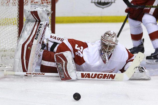Petr Mrázek v brance Detroitu v utkání NHL na ledě St. Louis.