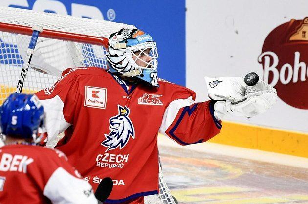 Gólman české hokejové reprezentace Patrik Bartošák v akci během utkání se Švédskem na Karjala Cupu.
