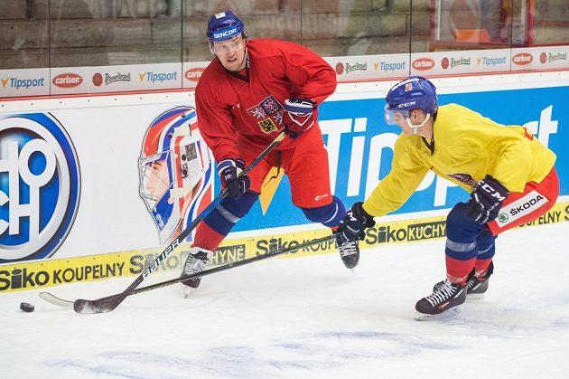 Jan Kovář (vlevo) během tréninku hokejové reprezentace v Českých Budějovicích.