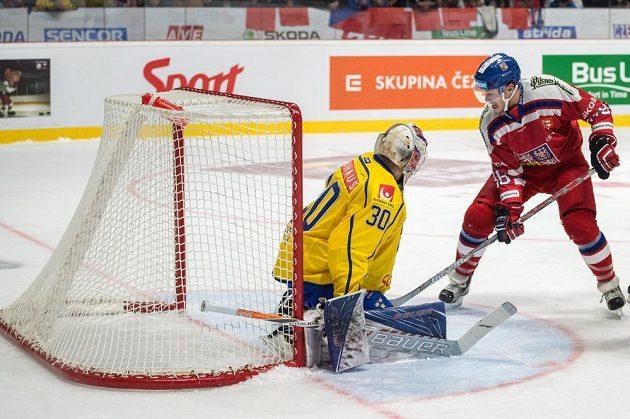 Český reprezentant David Pastrňák a švédský brankář Viktor Fasth během utkání Euro Hockey Tour ve Znojmě.
