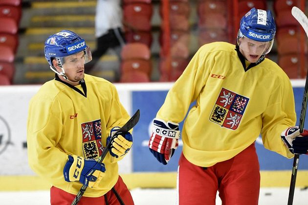 Petr Holík (vlevo) na prvním tréninku v rámci letního přípravného kempu české hokejové reprezentace v Jihlavě.