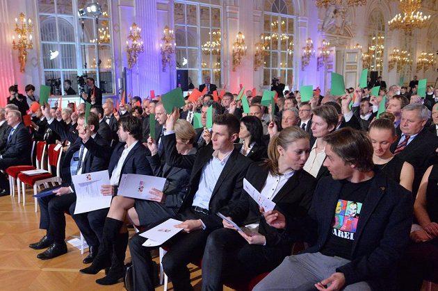 Plénum Českého olympijského výboru (ČOV) schválilo nominaci na zimní olympijské hry v Soči.