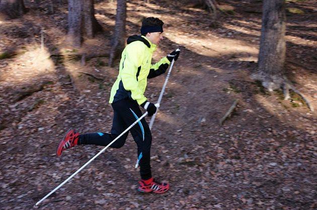 Nordic running? Ani v lese není problém.