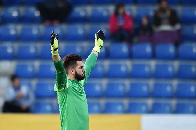 Radostné gesto brankáře Liberce Tomáše Koubka v utkání Příbrami.