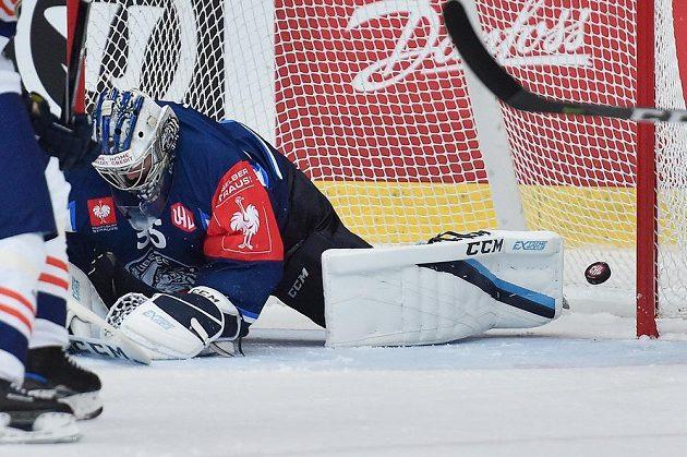 Brankář Roman Will z Liberce inkasuje první gól v souboji s Vaxjö.