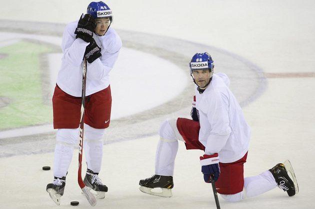 Bude to fungovat? Jágr s Hertlem si spolu zahráli jen krátce, v pátek se už ale připravovali na spolupráci proti Švédsku.