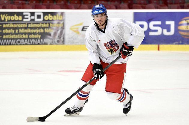 Martin Pláněk na prvním tréninku v rámci letního přípravného kempu české hokejové reprezentace v Jihlavě.