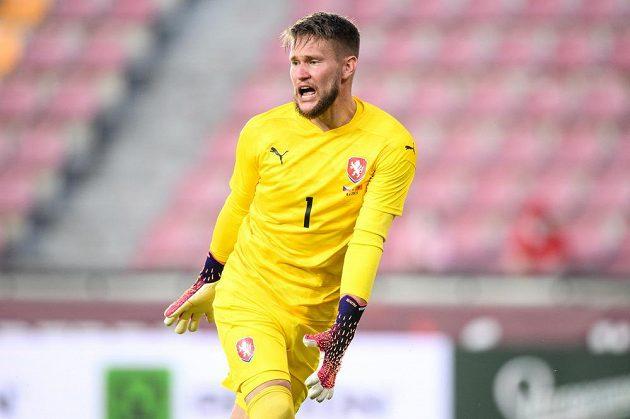 Český brankář Tomáš Vaclík během přípravného utkání před EURO proti Albánii.