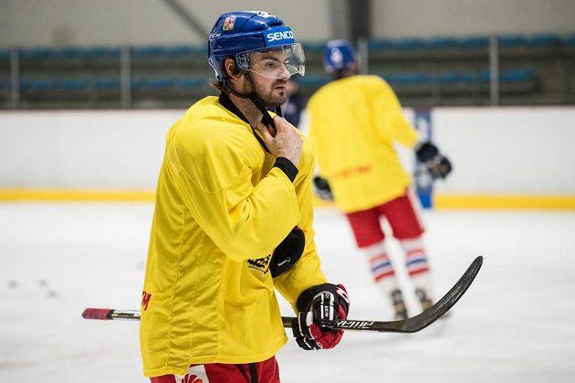 Útočník Roman Horák během tréninku hokejové reprezentace v pražských Letňanech.