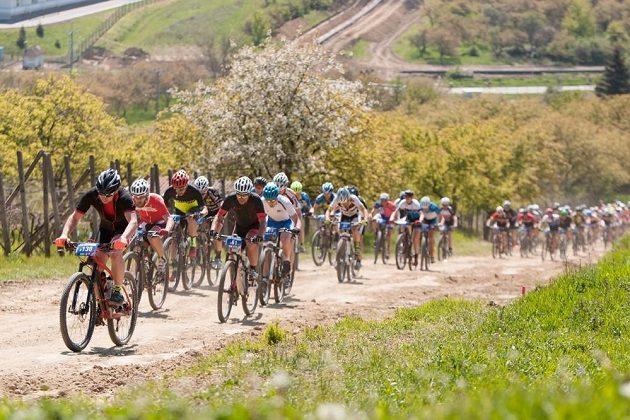 Bikeři při závodě Kolo pro život.