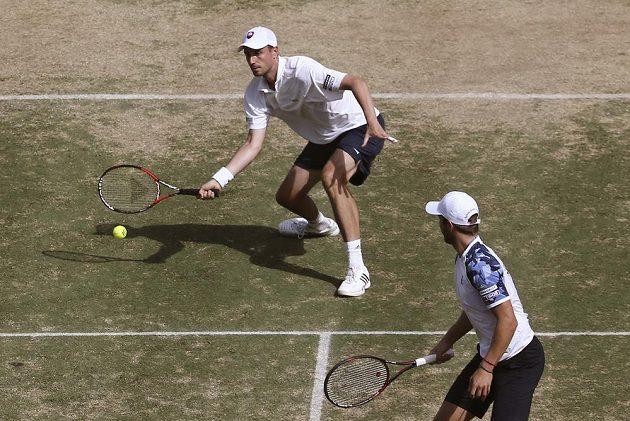 Slovenský pár Andrej Martin (vzadu) a Igor Zelenay při čtyřhře proti Austrálii.
