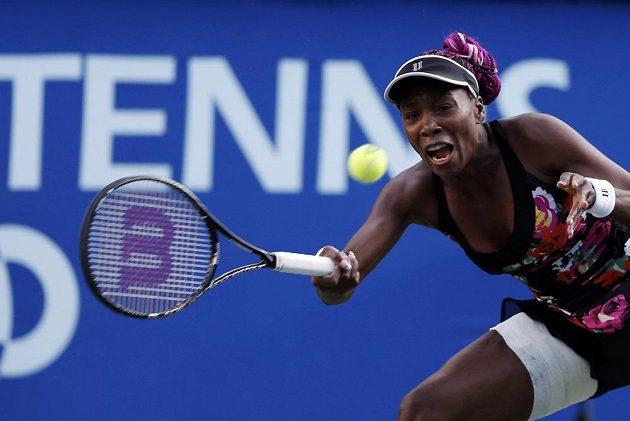 Americká tenistka Venus Williamsová v zápase proti Petře Kvitové.