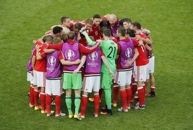 Fotbalisté Walesu se radují z výhry nad Slovenskem.